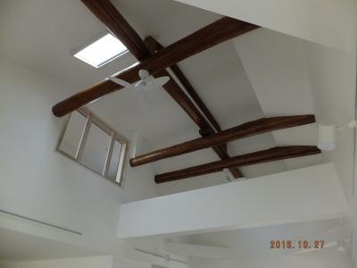 天井の景色です。